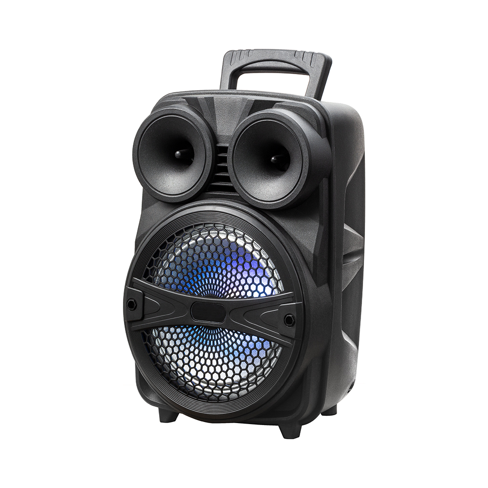 Outdoor portable speaker with bluetooth speaker (LY-BX0805)